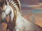 冠毛の陽馬